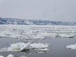 Le fleuve Saint Laurent