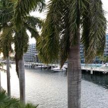 Les canaux de Miami