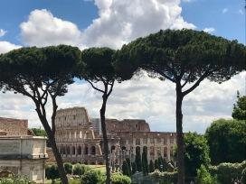 Rome _ Colisée